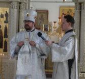 Божественная литургия в Никольском кафедральном соборе г.Ардатова