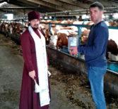 Освящение помещений и стад коров отделения «МАПО Ардатовское» в селе Кученяево