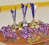В Ледовом дворце им.В.Г.Шувалова п.Атяшево прошел ежегодный VIII Рождественский открытый Республиканский турнир по хоккею с шайбой, организованный Ардатовской епархией
