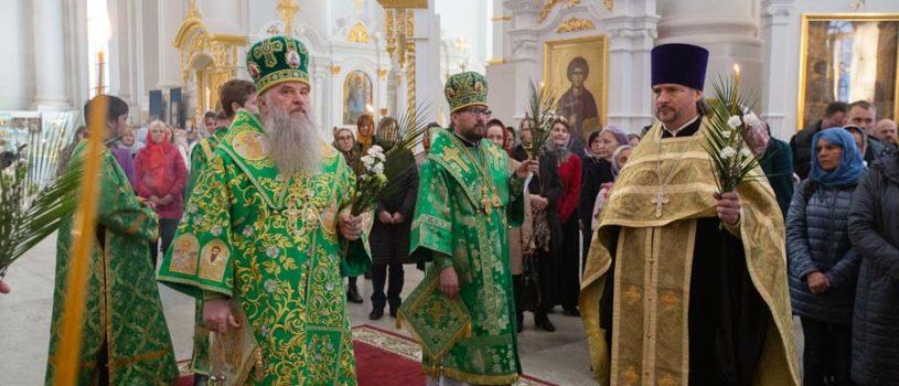 Накануне Вербного воскресенья Архипастырь сослужил  митрополиту Санкт-Петербургскому и Ладожскому Варсонофию за Всенощным бдением в Смольном соборе г.Санкт-Петербурга