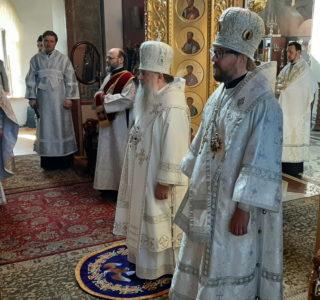 Архипастырь посетил Санкт-Петербургскую митрополию