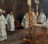 Архипастырский визит в Санкт-Петербургскую митрополию