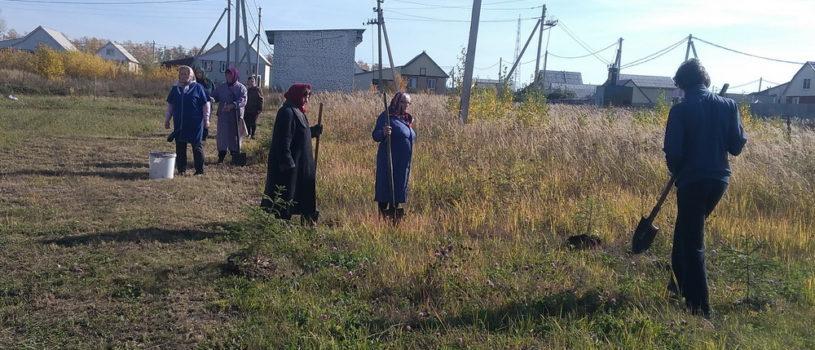 На архиерейском подворье Новомучеников и Исповедников Российских г.Ардатова активно облагораживается территория храма