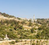 Пятый день паломничества на Святой земле начался Божественной литургией в храме Рождества Христова г.Вифлеема