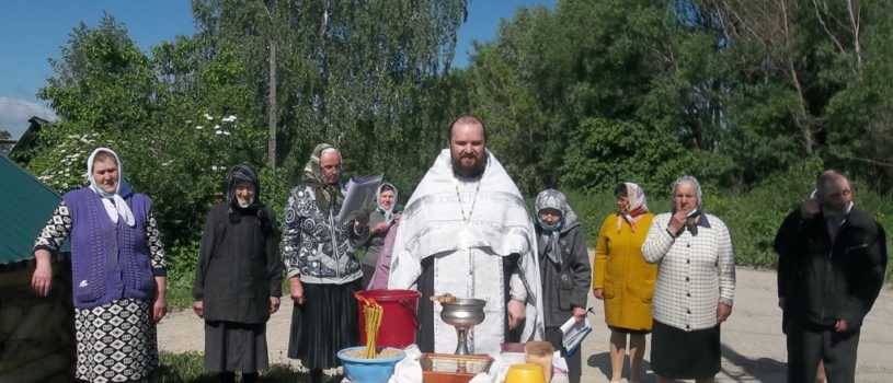 Водосвятный молебен на источнике Рождества Пресвятой Богородицы в с.Поводимово на Духов День