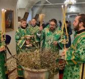 Всенощное бдение в Никольском кафедральном соборе г. Ардатова накануне Недели ваий