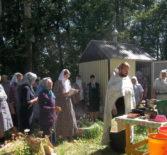 Источник Петров лисьма (источник Петра) посетили Поводимовские богомольцы